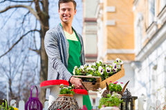 Florist with plant supply at shop. Young handsome florist delivering palette of flowers or viola Stock Photography