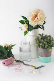 Florist preparation with selection of vases scissors and string Royalty Free Stock Photos