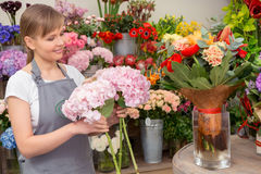 Florist puts bouquet into the vase Stock Photography