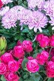 Florist's Display (4). Selections of Fresh Flowers on Display Stock Image