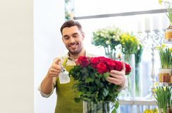 Florist or seller setting red roses at flower shop. Small business, sale and floristry concept - florist or seller setting red roses at flower shop royalty free stock photo