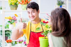 The florist selling flowers in a flower shop Royalty Free Stock Photos