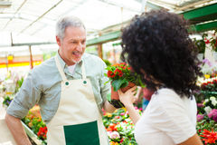Florist selling flowers to a customer Stock Photo
