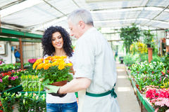 Florist selling flowers to a customer Stock Image