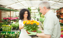 Florist selling flowers to a customer Stock Images