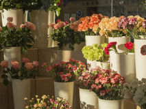 Florist shop planty of pink roses and red yellow orange and gree Stock Images