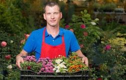 Florist shows the item for you Stock Images
