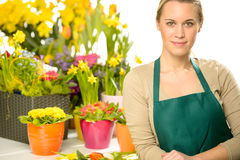 Florist with spring potted flowers Stock Photo