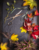 Florist table with autumn leaves, scissors and tape Stock Image