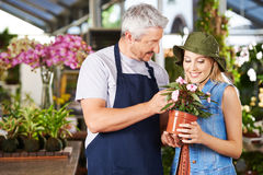 Florist talking to woman in nursery Royalty Free Stock Images