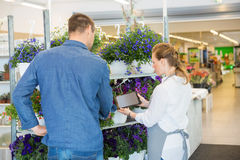 Florist Using Digital Tablet To Advise Customer In Royalty Free Stock Photos