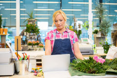 Florist Using Laptop At Counter In Flower Shop Stock Photos