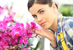 Florist woman with flowers orchids Royalty Free Stock Photo