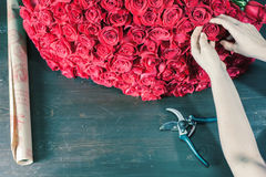 Florist woman prepares a big bouquet of red roses Stock Images