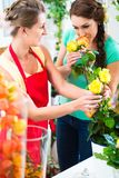 Florist woman selling rose bouquet to her customer Stock Image