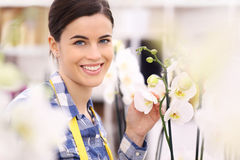 Florist woman smiling with flowers orchids Royalty Free Stock Photos