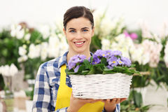 Florist woman smiling with white wicker basket flowers Stock Image