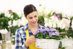 Florist woman smiling with white wicker basket flowers Royalty Free Stock Image