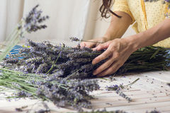 Florist at work: woman creating bouquet of natural lavender flow Royalty Free Stock Photo