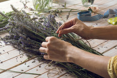 Florist at work: woman creating bouquet of natural lavender flow Stock Image