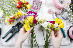 Florist at work. Woman making bouquet of freesia flowers Stock Photos