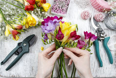 Florist at work. Woman making bouquet of freesia flowers Royalty Free Stock Photos