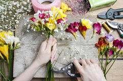 Florist at work. Woman making bouquet of freesia flowers Royalty Free Stock Image