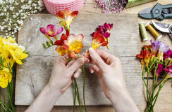 Florist at work. Woman making bouquet of spring freesia flowers stock images