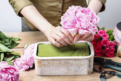 Florist at work: woman making floral decoration of pink peonies Stock Image