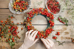 Florist at work: woman making rose hip and hawthorn wreath Royalty Free Stock Image