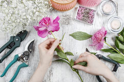 Florist at work. Woman making spring floral decorations. Of pink peonies Stock Photos