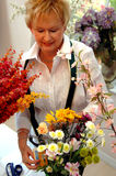 Florist working Stock Photos