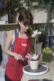 Florist Working At Counter im Shop Stockbilder