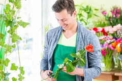 Florist working in flower shop Stock Images