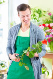 Florist working in flower shop Royalty Free Stock Photo