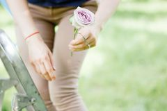 Florist working with flowers at green park or garden. royalty free stock photos