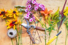Florist workplace. Flowers and tools to create a bouquet on a table. Hobby concept stock photography