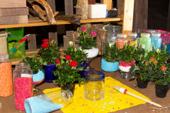 Florist workshop with plants on workbench Royalty Free Stock Photos