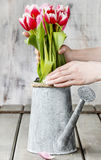 Florist workspace: woman arranging bouquet of tulips Royalty Free Stock Image