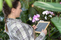 Florist writing on slate Stock Images