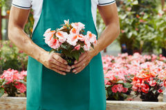 Florista Imagem de Stock Royalty Free