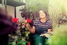 Florista con las herramientas en la tienda que cultiva un huerto Imagenes de archivo
