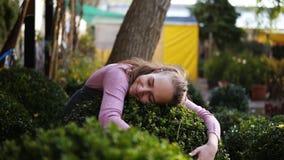 Florista de sexo femenino joven en boj verde del abarcamiento del delantal en el invernadero, sonrisa y mirada en la cámara Mujer almacen de video