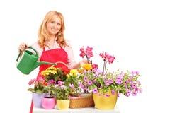 Florista de sexo femenino que sostiene una poder y que riega las flores Imagen de archivo
