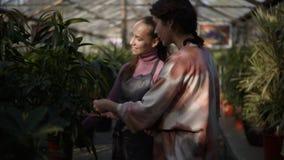 Florista de sexo femenino sonriente de los jóvenes que camina con un cliente y que le muestra diversas plantas, explicando la inf metrajes