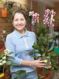 Florista fêmea com orquídea do Phalaenopsis Imagem de Stock Royalty Free