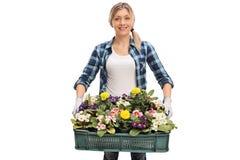 Florista fêmea que guarda uma cremalheira das flores Imagem de Stock Royalty Free