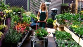 Florista fêmea que usa o trole do jardim filme