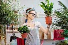 Florista lindo pensativo de la mujer que sostiene las plantas en macetas y el pensamiento Foto de archivo libre de regalías