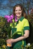 Florista o jardinero que presenta con la orquídea Fotos de archivo libres de regalías